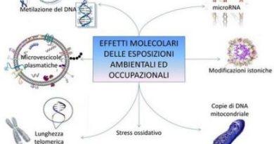 Approccio multidisciplinare medico e biofisico per la prevenzione ambientale